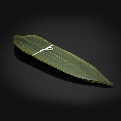 feuille-bambou